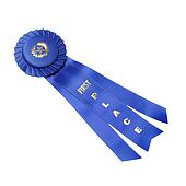 first place blue ribbon