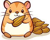 hamster mangeant des graines de tournesol