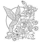 Clip Art Kolibri Ausmalbilder Für Erwachsene Vektor K41172439